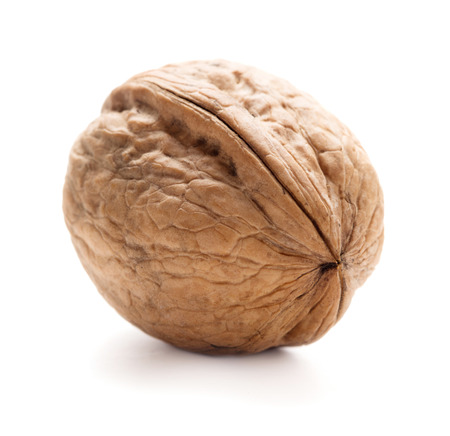whole walnut isolated on whte background Stock Photo