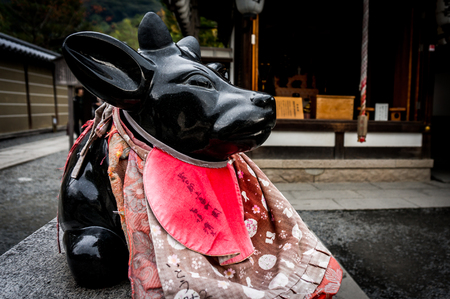 Sacred statue of marble cow at Kadai-ji Temple in Kyoto, Japan. Its believed that a stroke any part of statue then a part of your body, pain will go away - November, 2016. Stock Photo