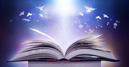 Il concetto di educazione, conoscenza e uccelli che volano nel futuro nell'apertura di vecchi libri nelle biblioteche che hanno una pila di libri di testo che memorizzano messaggi Archivio Fotografico