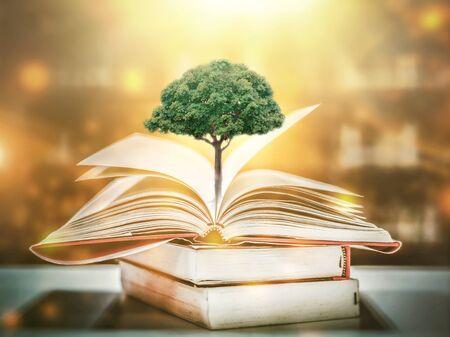 onderwijsconcept met boom der kennis planten bij het openen van oud groot boek in bibliotheek met leerboek, stapel stapels tekstarchief en gangpad van boekenplanken in de klas van de schoolstudie