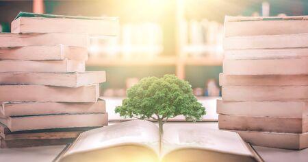 Bildungskonzept mit Baum des Wissens, das beim Öffnen eines alten großen Buches in der Bibliothek mit Lehrbuch, Stapeln von Textarchiven und Bücherregalen im Klassenzimmer der Schule gepflanzt wird Standard-Bild
