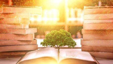 concept d'éducation avec plantation d'arbres de connaissances lors de l'ouverture d'un vieux gros livre dans une bibliothèque avec manuel, pile d'archives de texte et allée d'étagères dans la salle de classe d'étude de l'école Banque d'images