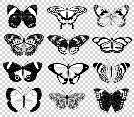 Collection d'illustrations vectorielles originales d'insectes papillons
