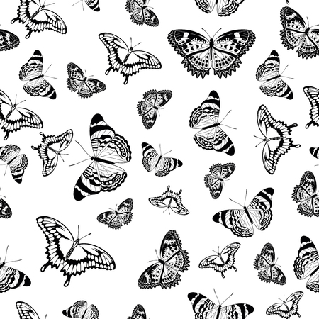 white: Vector seamless pattern of black and white butterflies over a white background