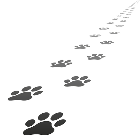 Perspective Footpath of vector dog prints walking straight away from the point of view Stock Illustratie