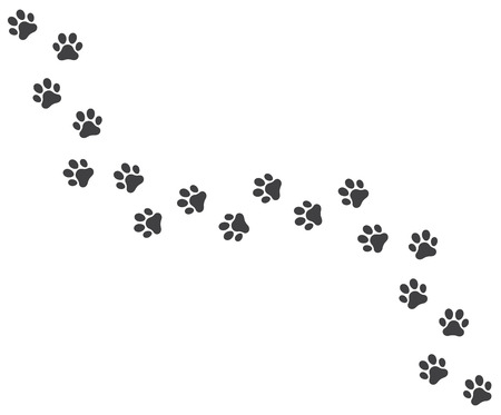 Vector illustration of a Footpath trail of vector dog prints walking randomly Çizim