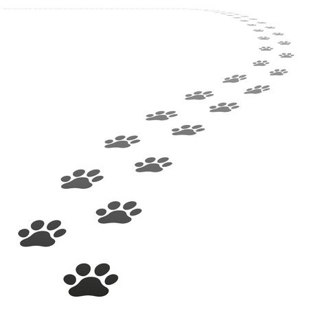 Perspective Footpath of vector dog prints walking away from the point of view