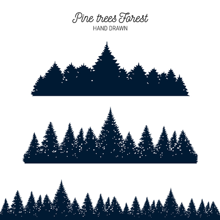 forest silhouette background. Coniferous spruce panorama