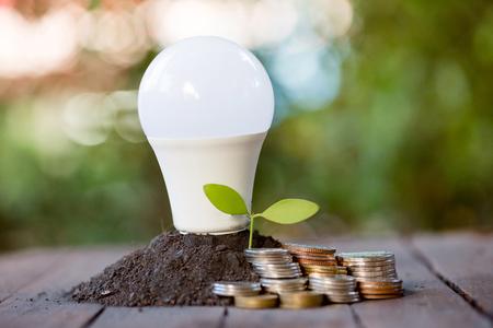 Economia de energia LED BULB ECO Com o ambiente Foto de archivo
