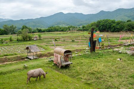 The Nature City Of North (farm) Mueang Nan, Thailand.