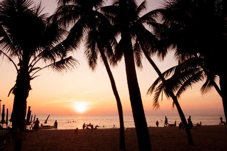 silhouette, Beautiful tropical beach with palm trees silhouettes at sunset.