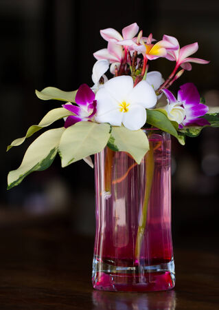Plumeria and orchid flower in vase photo