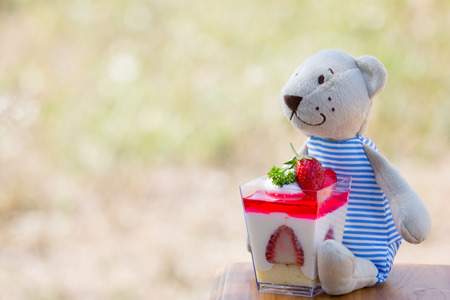 Teddy bear doll with strawberry cheescake  on meadow background in retro style photo