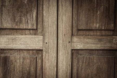 tree detail: old wooden door texture background