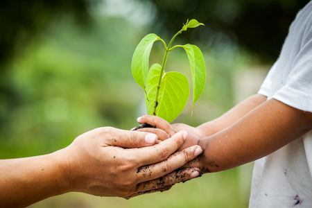 Dziecko z rodzicami ręka trzyma młodych drzewa w glebie razem do przygotowania roślin na ziemi, zapisać świata koncepcję