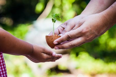 Kind met ouders de hand houden van de jonge boom in de eischaal samen voor te bereiden op planten op de grond, op te slaan wereld begrip Stockfoto