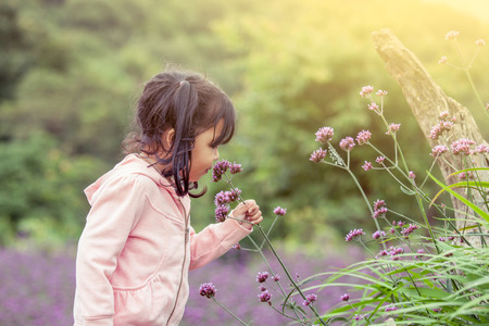 Child happy little girl  smelling flower in the garden,having fun with purple flower field in vintage color tone