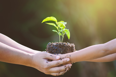 Kindmeisje en ouder die jonge plant in handen samen houden als sparen wereldconcept in uitstekende kleurentoon Stockfoto