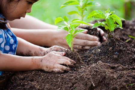 madre tierra: Asian little girl and parent planting young tree on black soil together as save world concept