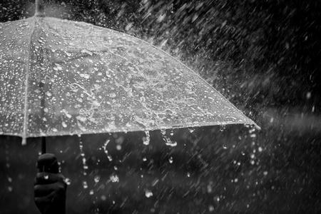 Salpicaduras de agua en el paraguas bajo la lluvia en tono de color blanco y negro Foto de archivo