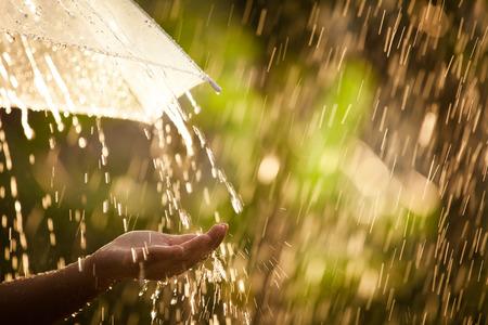 Vrouwenhand met paraplu in de regen op groene aardachtergrond Stockfoto