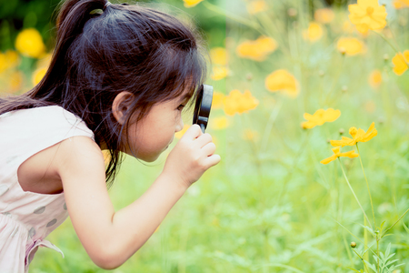 Asian little child girl looking through a magnifying glass on cosmos flower in the garden Stock Photo
