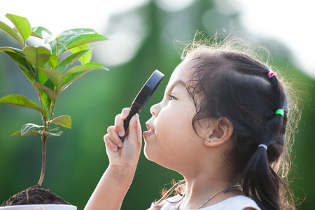 Cute asian little child girl looking through a magnifying glass on young tree in the park Stock Photo