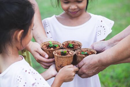 Children and parent hands holding young seedlings in recycle fiber pots together for planting in the garden