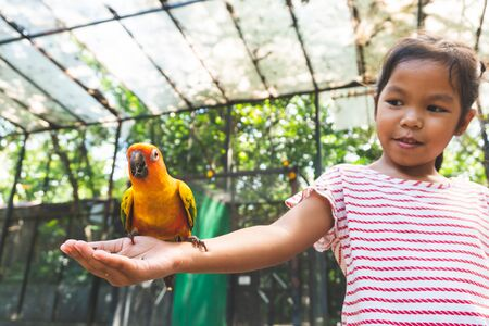Beautiful little parrot birds standing on child hand and eating sunflower seed on hand 스톡 콘텐츠