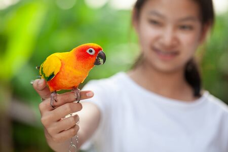 Beautiful little parrot birds standing on woman hand. Asian teenager girl play with her pet parrot bird with fun and love