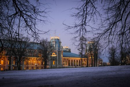 gothic build: the main palace in Tsaritsyno spring evening in the frame of branches backlit Stock Photo