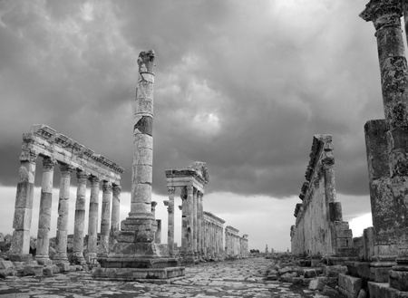 Apamea during antique times was a chief town of Syria which stores till now uncountable secrets and treasures