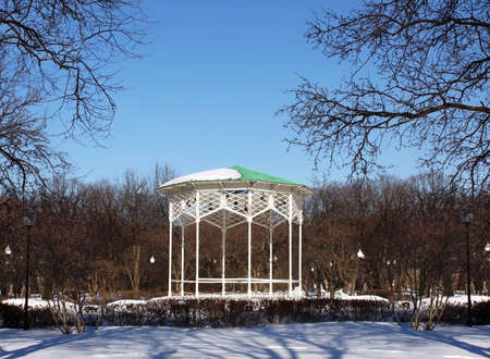 entrance arbor: White wooden arbor on the background of  leafless trees