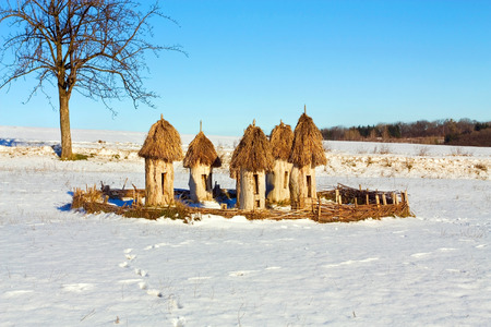 Ukrainian old time beehives on the background of a winter rural landscape with tree Stock Photo