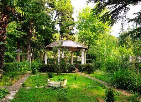 entrance arbor: Gazebo in the garden among subtropical plants Stock Photo