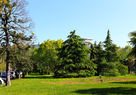 subtropical: Area of the subtropical plants and trees in the city center