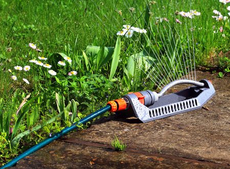 watering hose: Portable pulsating spray with hose for watering lawns