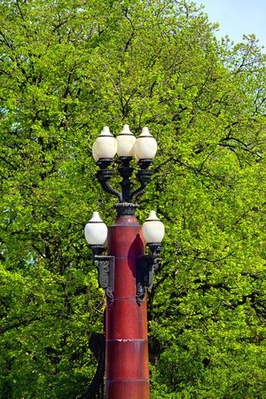 Multi-plafond street lamp on a cast-iron pole against a background of foliage Stock Photo