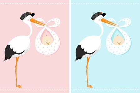 Stork Delivering A Baby Illustration