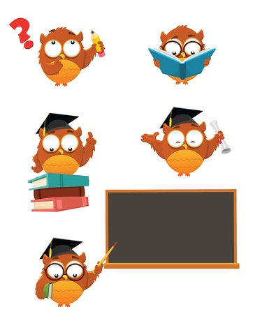 graduacion caricatura: Inteligente Owl Set