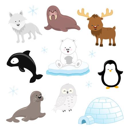 igloo: Arctic Animal Set Illustration