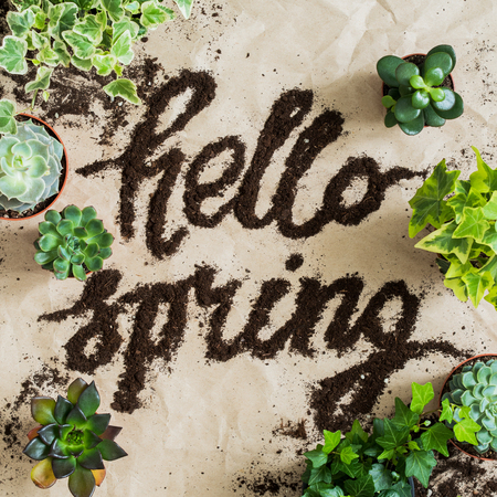 Garden tools with succulents and ivy in pots on rumpled craft paper with the lettering HELLO SPRING by soil. Spring concept.
