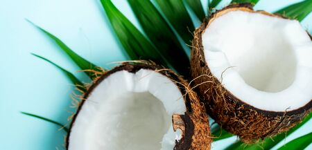 Composition with fresh halfies coconuts on palm leaves on turquoise blue light background with copy space. Exotic botanical concept for cosmetics, spa, perfume, health care products, aroma. Wide banner.