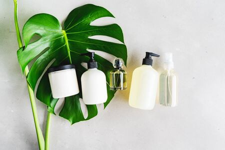 Cosmetic set of blank label bottles for mockup packaging of skincare product cream, serum, oil, shampoo, conditioner, perfume on grey background with green leaves. Natural beauty product concept.