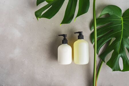 Cosmetic set of two blank label bottles for mockup packaging of skincare product cream, shampoo, conditioner on grey background with green leaves. Natural beauty product concept. Stock Photo