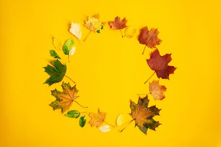 Flat lay wreath of colorful autumn leaves. Nature mockup background. Seasonal concept. Creative season layout. Standard-Bild
