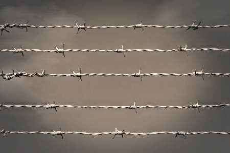 Barbed wire in sepia Stock Photo - 8175294