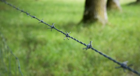Barbed wire protecting a green meadow Stock Photo - 8175309