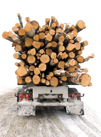Truckl with of timber seen from behind photo