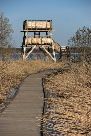 hobby hut: Bird watching ower in the early spring